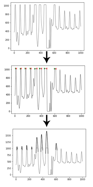 Algorithm functioning — Python Heart Rate Analysis Toolkit